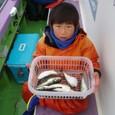 2009.1.18(日) 8匹釣り健闘した石井華斗くん!【9才】