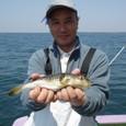 2009.4.29(水) 8匹・菱田さん!
