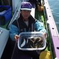2008.10.28(火) 初挑戦で28匹釣った渡辺さん!