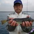 2008.11.15(土) 34cmを含む11匹を釣り竿頭の日向さん!