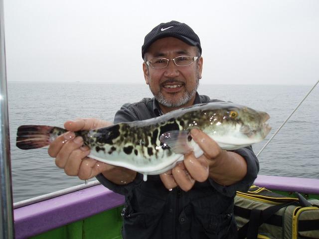 2009.6.9(火) 43cmトラフグ・小倉さん!