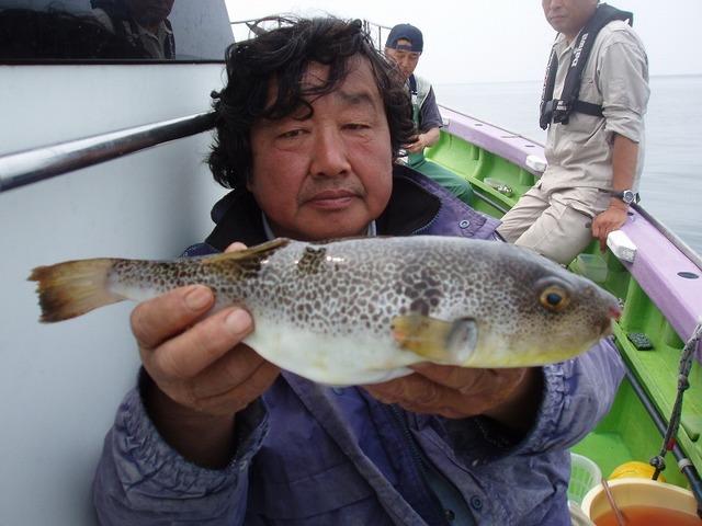 2009.6.14(日) 38cmの特大デブフグ・渡部さん!