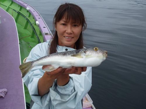 2008.6.27   33cmを釣った忍姫!