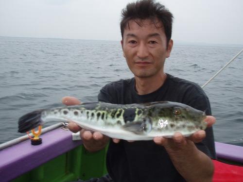 2008.9.15   37cmのトラフグを釣った伊藤さん!